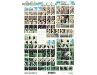 3D papíry pro vystřihování- čtvercové- sloni a pandy