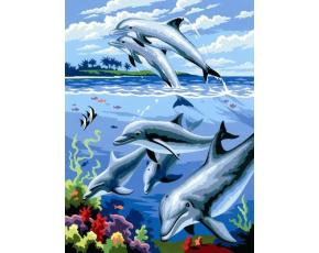Malování podle čísel- Delfíni