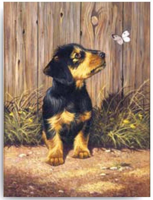 Malování podle čísel- Pejsek s motýlkem