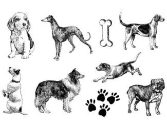 Gelová razítka- Psi