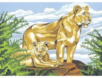 Malování podle čísel- Lví pohoda