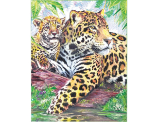 Malování podle čísel PASTELKAMI - Jaguáři