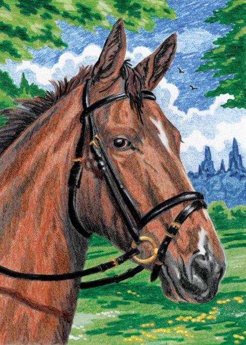 Malování podle čísel PASTELKAMI - Kůň