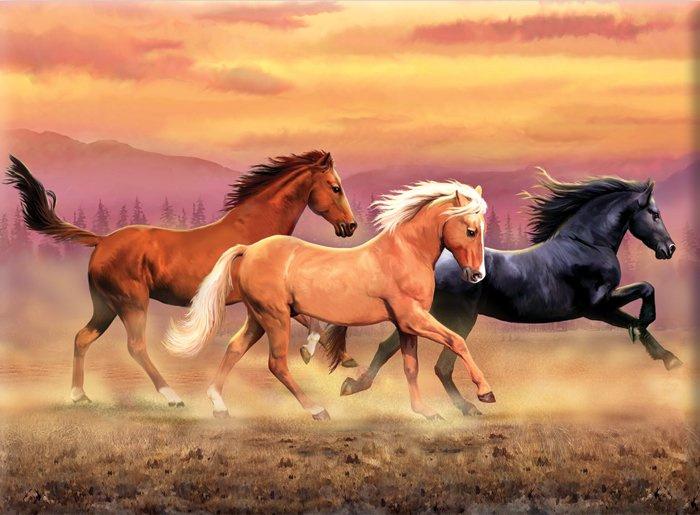 Malování podle čísel - Běžící koně