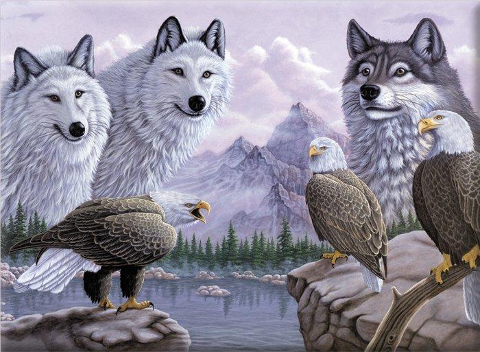 Malování podle čísel -Vlci a orli
