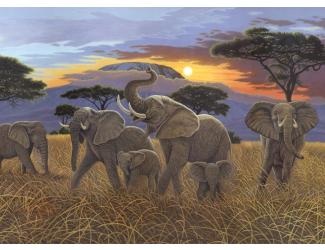 Malování podle čísel - Západ slunce nad Kilimanžárem