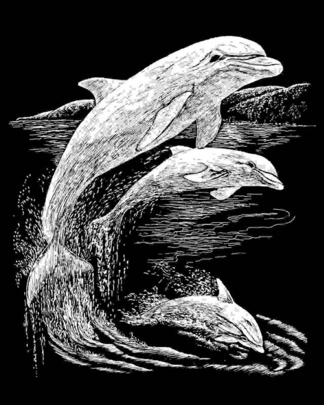 ROYAL and LANGNICKEL Stříbrný vyškrabovací obrázek - Delfíni