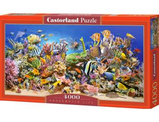 Puzzle Castorland 4000 dílků - Podvodní život