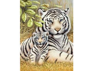 Malování podle čísel - Tygr-matka s mládětem