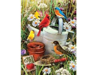 Malování podle čísel - Ptáčci u zahradní konve