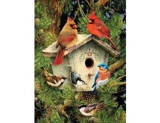 Malování podle čísel - Ptáčci u budky
