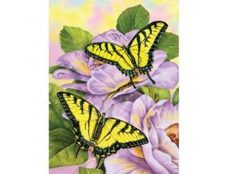 Malování podle čísel - Otakárci na fialových kytkách