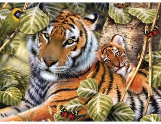 Malování podle čísel - Tygr a mládě
