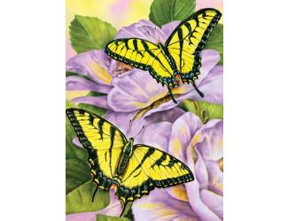 Malování podle čísel mini- Motýlci