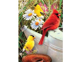 Malování podle čísel mini- Ptáčci