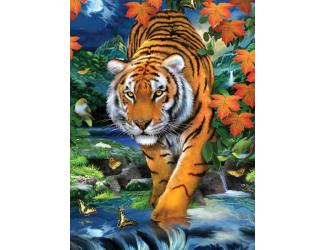 Malování podle čísel - Tygr