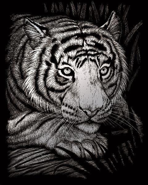 Vyškrabovací obrázek- Tygr - SILF*38