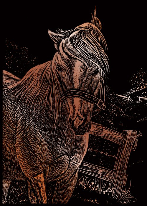 Seškrabovací obrázek- mini- Kůň