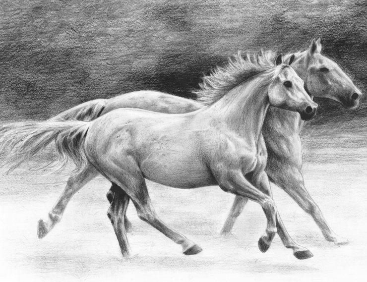 Malování SKICOVACÍMI TUŽKAMI-Běžící koně