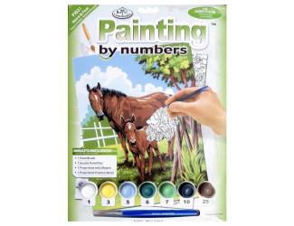 Malování podle čísel- Koně