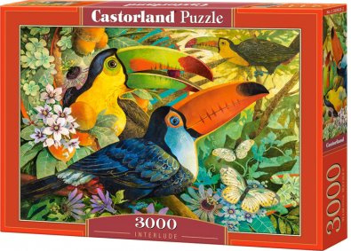 Puzzle Castorland 3000 dílků - Tukani