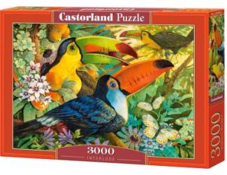 Puzzle 3000 dílků- Tukani