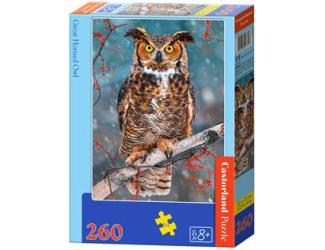 Puzzle 260 dílků- Výr ušatý