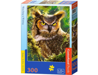 Puzzle 300 dílků- Výr
