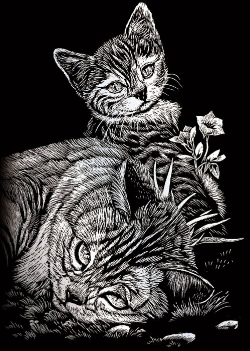 Seškrabovací obrázek- mini- Stříbrný- Kočička a kotě