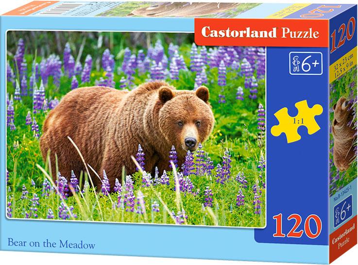 Puzzle Castorland 120 dílků - Medvěd na louce