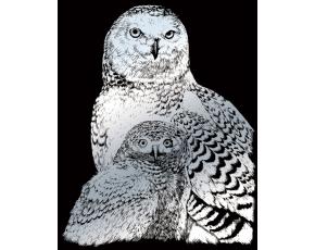 Škrabací obrázek stříbrný - Sněžné sovy