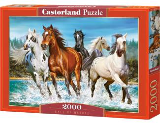 Puzzle Castorland 2000 dílků - Běžící koně