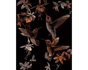 Vyškrabovací obrázek-Kolibříci