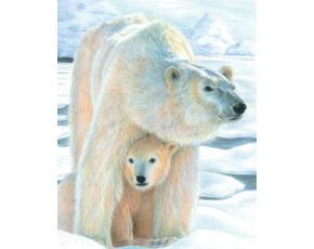 Malování podle čísel PASTELKAMI - Lední medvěd