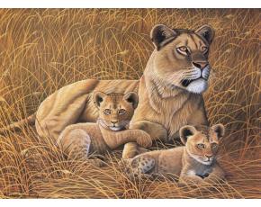Malování podle čísel- Lvice a lvíčata
