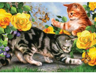 Malování podle čísel 40 x 30cm - Koťata na zahradě