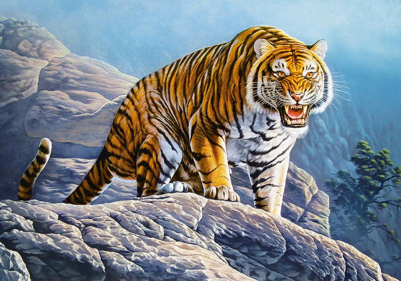 Puzzle Castorland 500 dílků - Tygr na skále