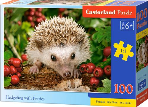 Puzzle Castorland 100 dílků premium - Ježek s ovocem