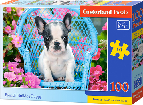 Puzzle Castorland 100 dílků premium - Štěně Francouzského buldočka