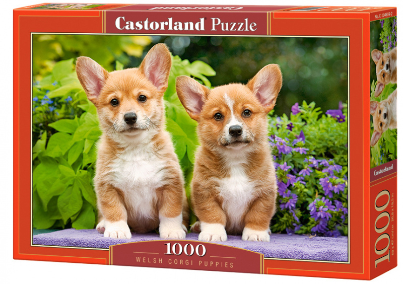 """Puzzle Castorland 1000 dílků - Štěňata ,, Welsh Corgi """""""